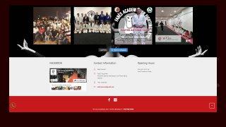 The Guru Academy - Instagram feed embed & facebook widget
